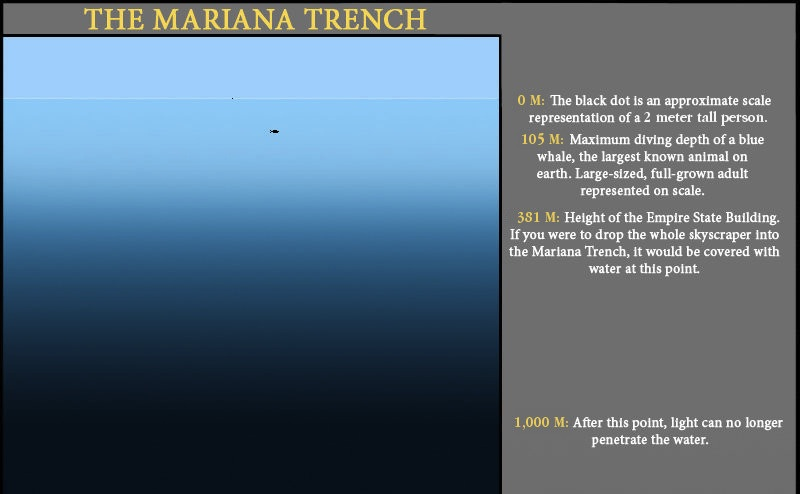 The Pacific Ocean, from top to bottom over the Marianas Trench. Click to see full water column.