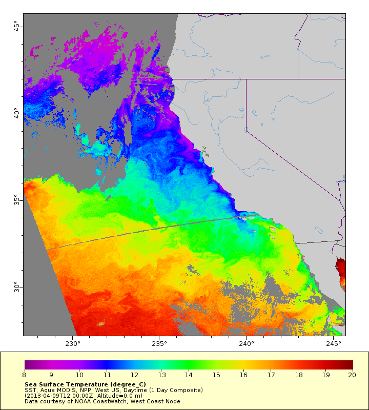 California Current SST